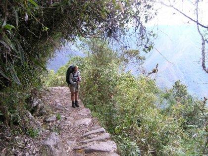 Semi-tropisk regnskov paa Inka-stien