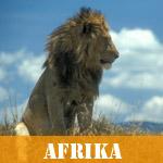 Vælg landeliste for Afrika